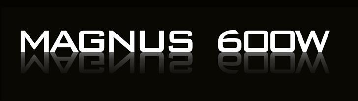 Neotec Magnus 600w